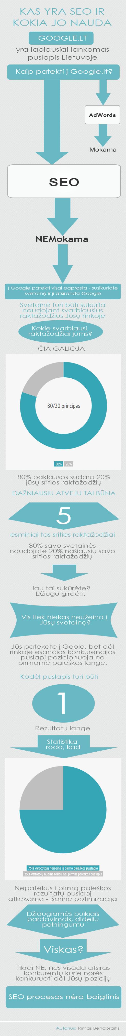 kas yra seo infografikas