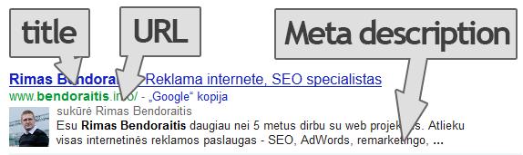 svetainės optimizacija title url meta